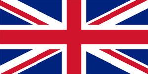 11 на каком изображений изображен флаг